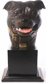 Specially commissioned brown Staffordshire Bull Terrier Busts
