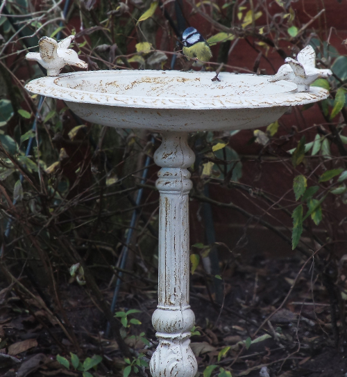 Quot Josette Quot Antique Cast Iron Bird Bath Bird Baths Amp Bird