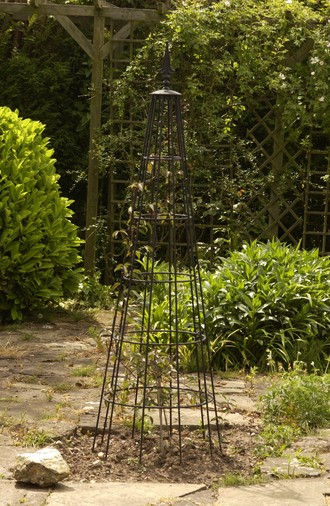 Plant Supports And Garden Obelisks Black Country Metal Works