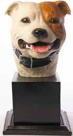 Specially commissioned tan & white Staffordshire Bull Terrier bust.