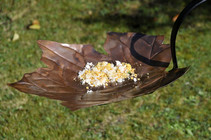 Forever Autumn Leaf Design Bird Bath & Feeder